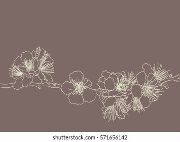 blossoming tree line art hand drawing. spring stylish background with sakura flowers outline vector