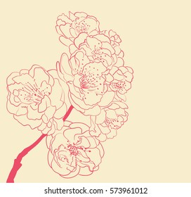 blossoming tree line art hand drawing. spring background with flowers outlines vector