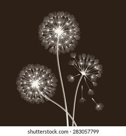 Blowball seeds over black background. Vector illustration.