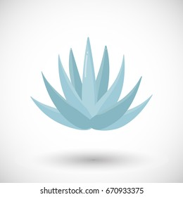 Blue agave plant vector flat icon, Flat design of food, drink, tequila making product and nature object with round shadow isolated on the white background, cute vector illustration with reflections