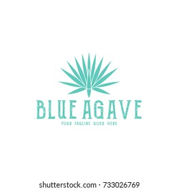 Blue agave. Tequila logo. Isolated agave on white background