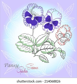 Blue background with pansies. Vector illustration