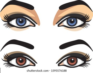 Blue and brown female eyes. Vector