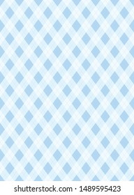 Blue check Clothing textiles pattern