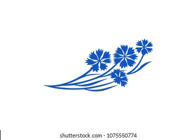 Blue Cornflower Vector