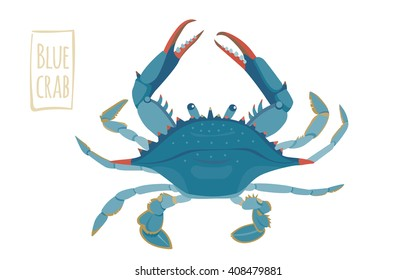 Blue crab, vector cartoon illustration