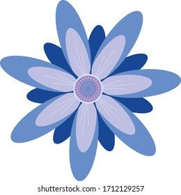 Blue Daisy Flower Hand drawn Illustration