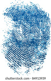 Blue fingerprint (vector)