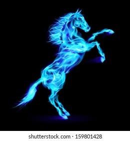 Blue fire horse rearing up. Illustration on black background.