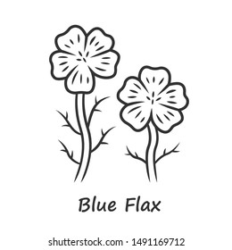 Blue flax plant linear icon. Thin line illustration. Linen wild flower with name inscription. Spring blossom. Blooming linum wildflower inflorescence. Contour symbol. Vector isolated outline drawing