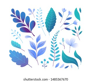 Blue forest foliage vector illustrations set. Various woodland leafage, abstract herbarium isolated on white background. Colorful leaves blooming flowers and berries. Botany symbols collection