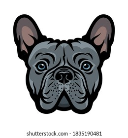 Blue French bulldog face isolated vector illustration