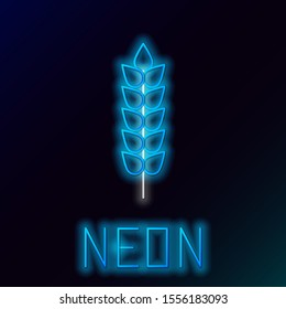 Blue glowing neon line Cereals set with rice, wheat, corn, oats, rye, barley icon isolated on black background. Ears of wheat bread symbols. Colorful outline concept. Vector Illustration
