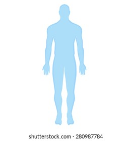 blue human silhouette on a white background. Modern Medical vector infographics. Medic anatomy