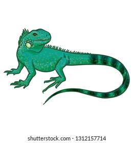 Blue Iguana Cartoon Animal Vector Illustration