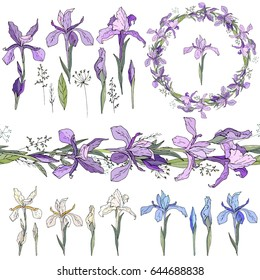 Blue irises - elements. Isolated objects, wreath and endless border