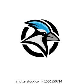 blue jay bird color head mascot logo icon designs vector illustration