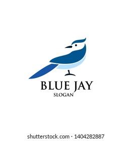 blue jay bird logo icon designs vector illustration