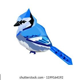 Blue Jay bird Vector Illustration.