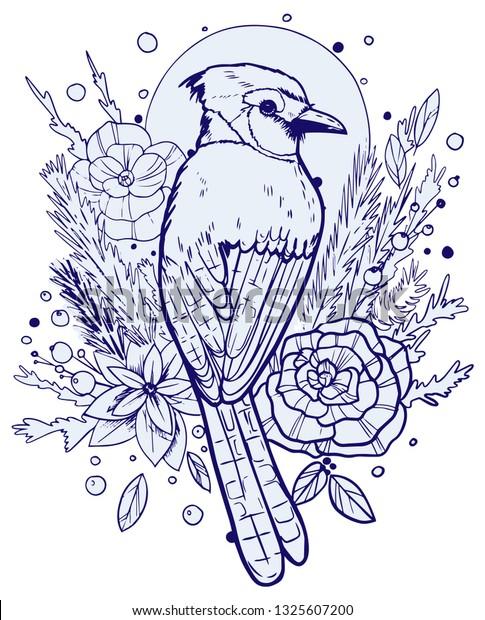 - Blue Jay Illustration Tshirt Design Tattoo Stock Vector (Royalty Free)  1325607200