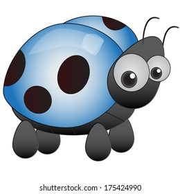 Blue Ladybird