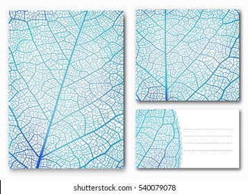 Blue leaf backgrounds with space for your text. Vector illustration