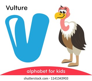 Blue letter V and cute Vulture. English alphabet with animals. Cartoon characters isolated on white background. Flat design. Zoo theme. Colorful vector illustration for kids.