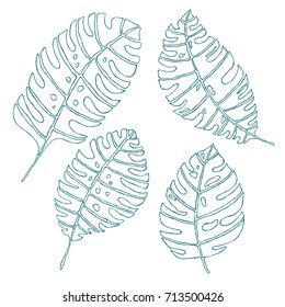 Blue line leaves