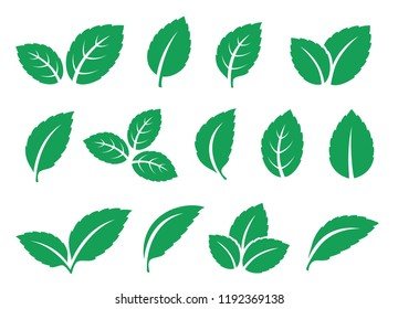 blue mint leaves set icons on white