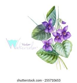 Blue pansy viola flowers bouquet, vector watercolor illustration