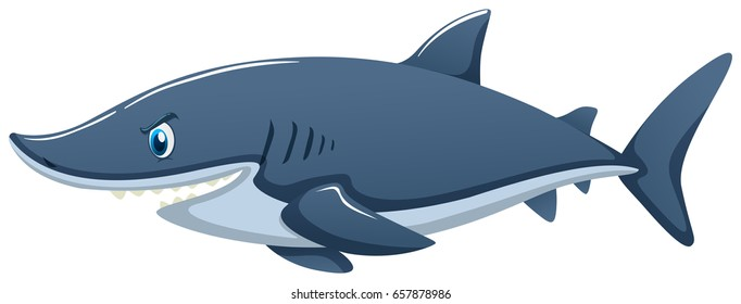 Blue shark on white background illustration