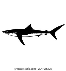 Blue Shark Silhouette Isolated on White