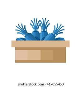 blue Squid on tray wood