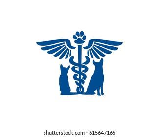 Blue vet clinic