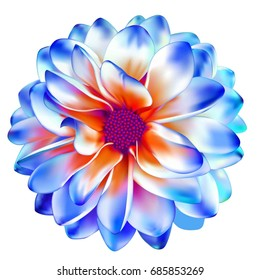 Blue, white and red Mona Lisa flower, dahlia flower, Spring Gerber flower.Isolated on white background. illustration of Bright colorful Dahlia flower,