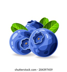 Blueberries and leaves isolated on white 1. Vector illustration. Composition of the three berries.