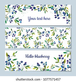 Blueberry banners set with pattern and graphic design, vector illustration