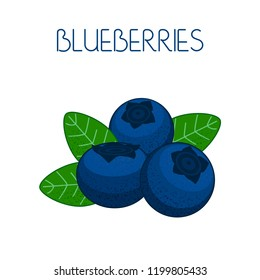 Blueberry. Berries and leaves on isolated background. Vector