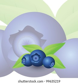 Blueberry card with sweet background.