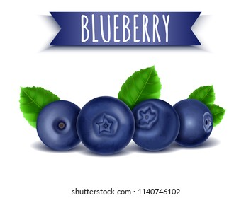 Blueberry with Green Leaves, Realistic Fresh Sweet Fruit, Isolated on White Background, Hand Drawn, Vector 3D Illustration