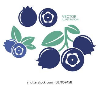 Blueberry. Icon set. Fresh blueberry on white background