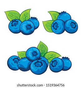 Blueberry illustration. Vector. Blueberries with leaves. Hand drawn. Isolated on white background.