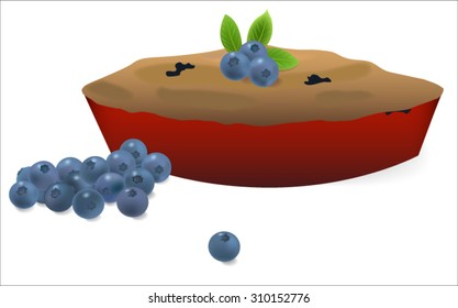 Blueberry pie with blueberries on white background vector