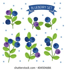 blueberry set. Perfect for wallpaper, wrapping paper, textile and package design