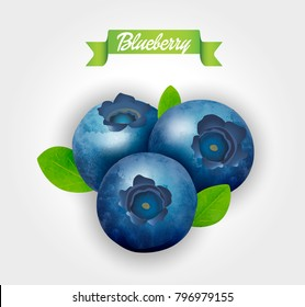 Blueberry. Sweet fruit. Forest berry. 3d vector icon. Realistic illustration