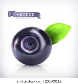 Blueberry, vector illustration