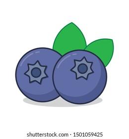 Blueberry vector illustration isolated on white background. Blueberry clip art.