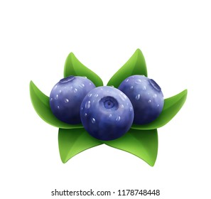 Blueberry with water drops and leaves. Forest berries.