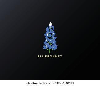 Bluebonnet art Design vector illustration