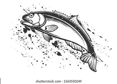 Bluefish isolated vector illustration. Fishing logo of mackerel. Fishing emlem for company or sport club. Marine theme background.